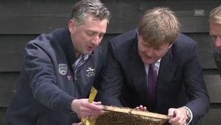 Hof trifft Honig: König Willem-Alexander zu Besuch beim Imker