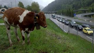 Nur je eine Spur am Gotthard: Wie sagen wir's den Europäern?