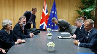 Vor einem Jahr sagten die Briten Ja zum Brexit. Nun äussert sich Premierministerin May über den künftigen Status der EU-Bürger.