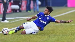 Schalke fordert das grosse ManCity
