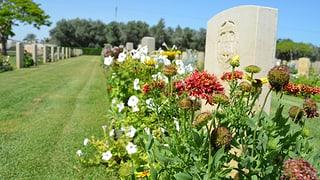 Warum ein britischer Friedhof in Gaza steht