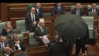 Im Parlament fliegen die Eier