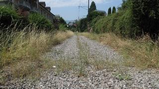 Kein Fernwärmenetz im Zentralbahn-Trassee