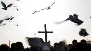 Polnische Kirche plant Reuegebet zu sexuellem Missbrauch