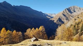 Emprim parc natiral regiunal per Svizra taliana