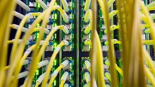 «Cyber-Sicherheit: Wir haben grossen Aufholbedarf»