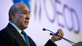 OECD sagt Steuerschlupflöchern den Kampf an