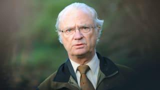 König Carl Gustaf in Mord verwickelt?