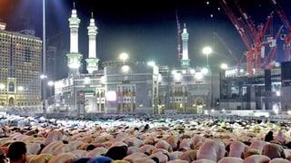 «Saudi-Arabien verhält sich punkto Terrorismus schizophren»