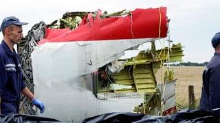 Kopfgeldjagd wegen MH17-Absturz