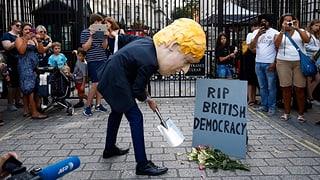 Was Johnsons Griff in die Trickkiste für den Brexit bedeutet