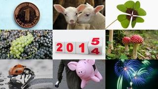Von Glücksbringern und Silvesterbräuchen: Prosit Neujahr!