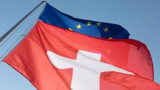 Video «Aktenzeichen EU ungelöst» abspielen