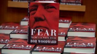 Das grosse Geld mit Trump und Woodward