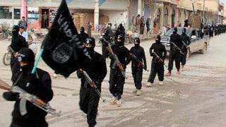 Wie die Schweiz den Kampf gegen den IS unterstützt