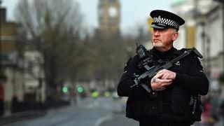 «London lebt seit Jahren mit dieser Terrorgefahr»