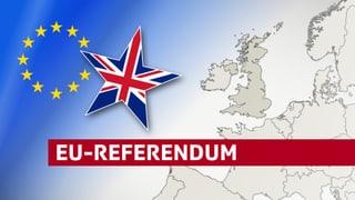 Zahlen und Fakten zur Brexit-Debatte