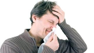 Video «Sinusitis, Grippeimpfung, Schwangerschaftsübelkeit, Wildbeeren» abspielen