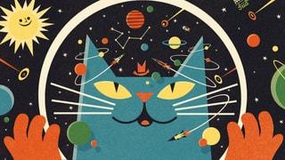Eine Katze erklärt das All