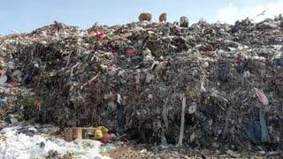 Die Trauminsel versinkt im Müll
