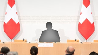 Wer auch immer Nachfolger von Didier Burkhalter wird, muss viel können. Besonders ein Talent ist gefragt.