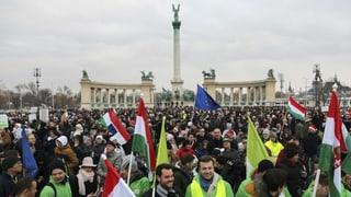 «Das erste Mal, dass Linke und Jobbik kooperieren»