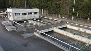 «Abwasser in den Bielersee leiten wäre günstiger»
