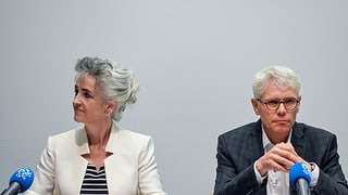 Die Zürcher Regierung wünscht sich mehr Ausländer