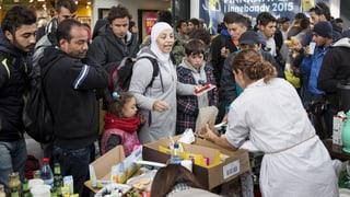 «Ohne Zuwanderer wäre Schwedens Sozialstaat nicht zu finanzieren»