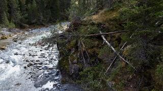 Spöl im Nationalpark bereit für Renaturierung