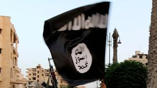 «IS-Zellen sind über die ganze Schweiz verteilt»