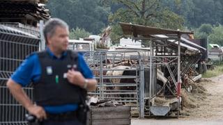 Hefenhofen: Regenza turgovaisa conceda sbagls
