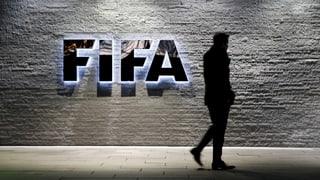 «Ohne Reformen ist die Fifa in ihrer Existenz gefährdet»
