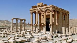 «Warum schützt niemand Palmyra?»
