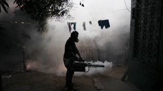 Zika-Virus breitet sich in ganz Amerika aus