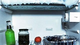 Jetzt mit Kühlschrank-abtauen Strom sparen