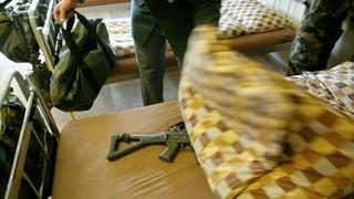 Schweizer Militär kämpft gegen Wanzen