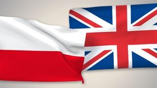 Das Thema Einwanderung hat das Referendum entschieden