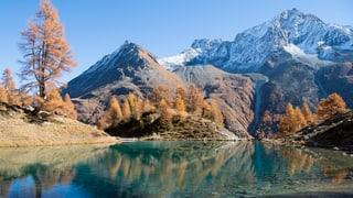 «Echo der Zeit»-Herbstserie Segen oder Ausverkauf der Heimat?