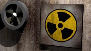 USA: Nordkorea kann wieder Plutonium produzieren