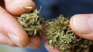 Nagin chasti per il possess da pitschnas quantitads da cannabis