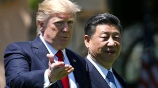 «Trump und Xi könnten einen Deal eingehen»