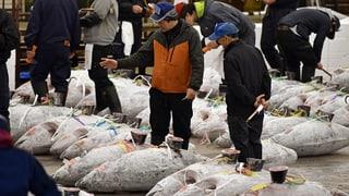 Der weltgrösste Fischmarkt zieht um