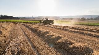 Dicke Post für die geschützte Landwirtschaft
