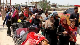 Zehntausende im Westen Iraks fliehen vor dem IS