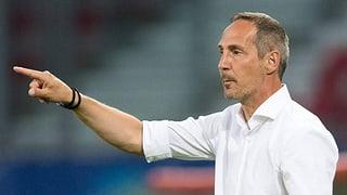 Adi Hütter neuer YB-Trainer