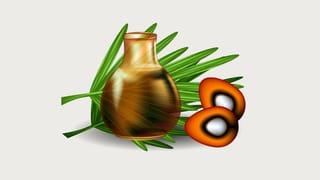 Palmöl in der Welt