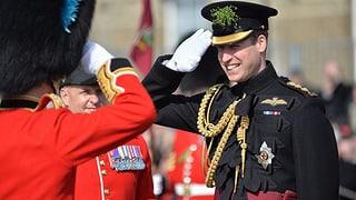 Prinz William feiert St. Patrick's Day-Parade ohne seine Kate