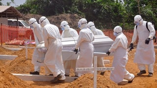 Rapport crititgescha WHO davart l'epidemia d'ebola