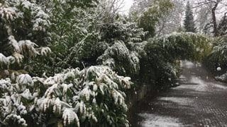 Wintermärchen Ende April
